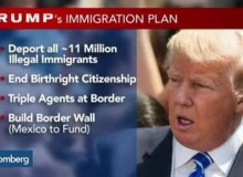What does President-Elect Donald Trump agenda means for immigration??